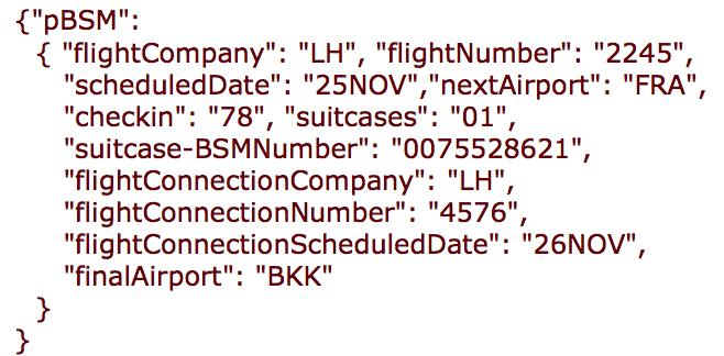 A JSON pseudo BSM example.